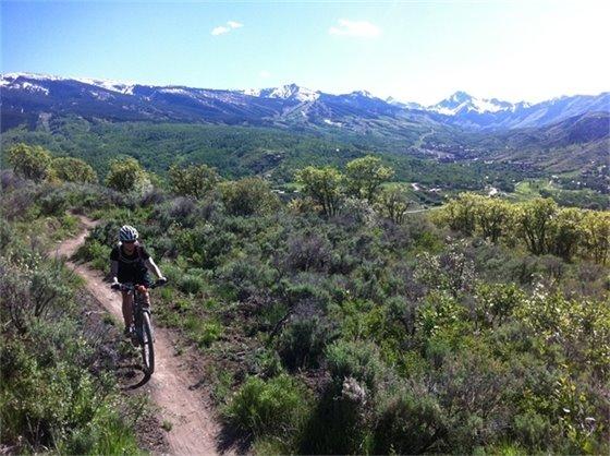 Viewline Trail
